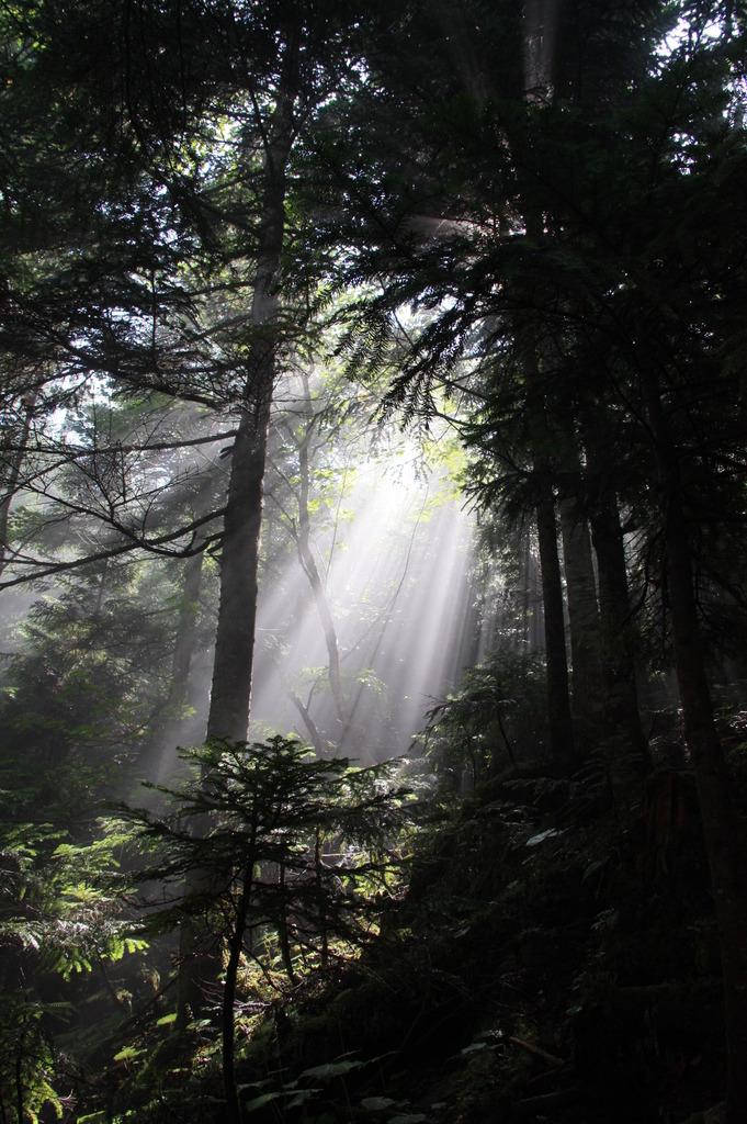 日光白根山