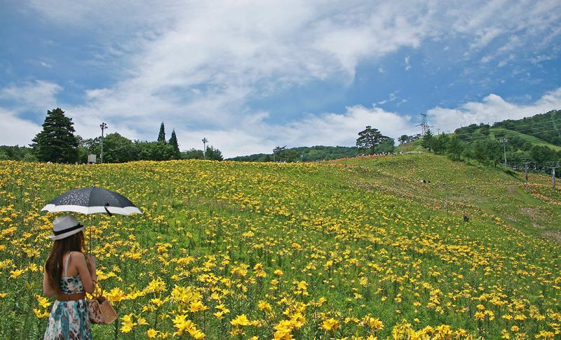高原の楽園