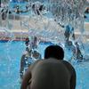夏だプールだ