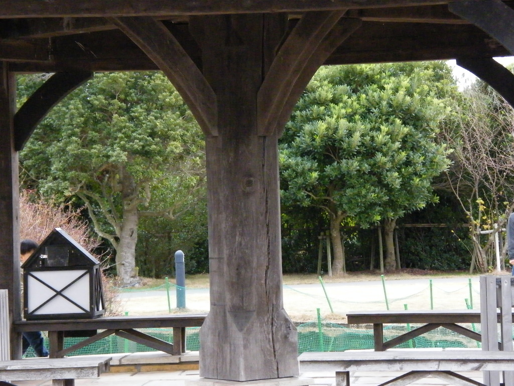 ローズマリー公園25