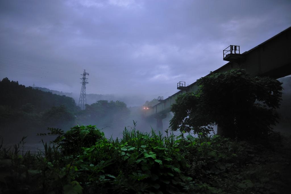 霧の中をやってくる