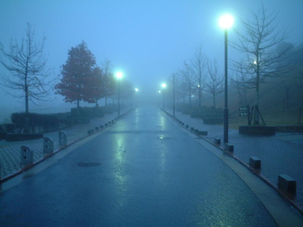 雨の夕暮れの公園