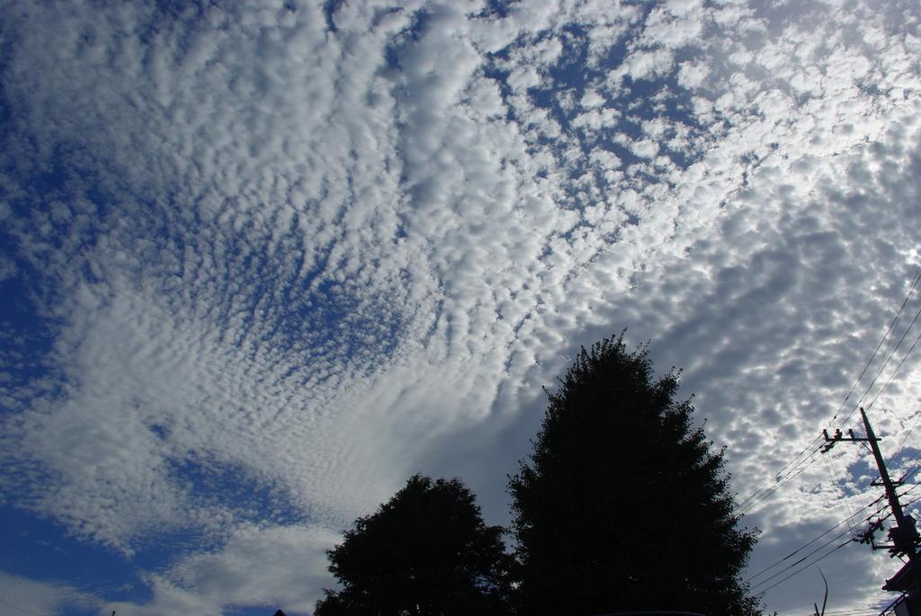 ドット雲2