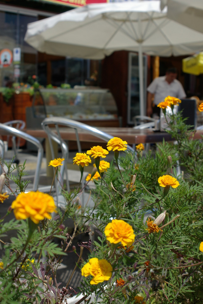 港のカフェ2