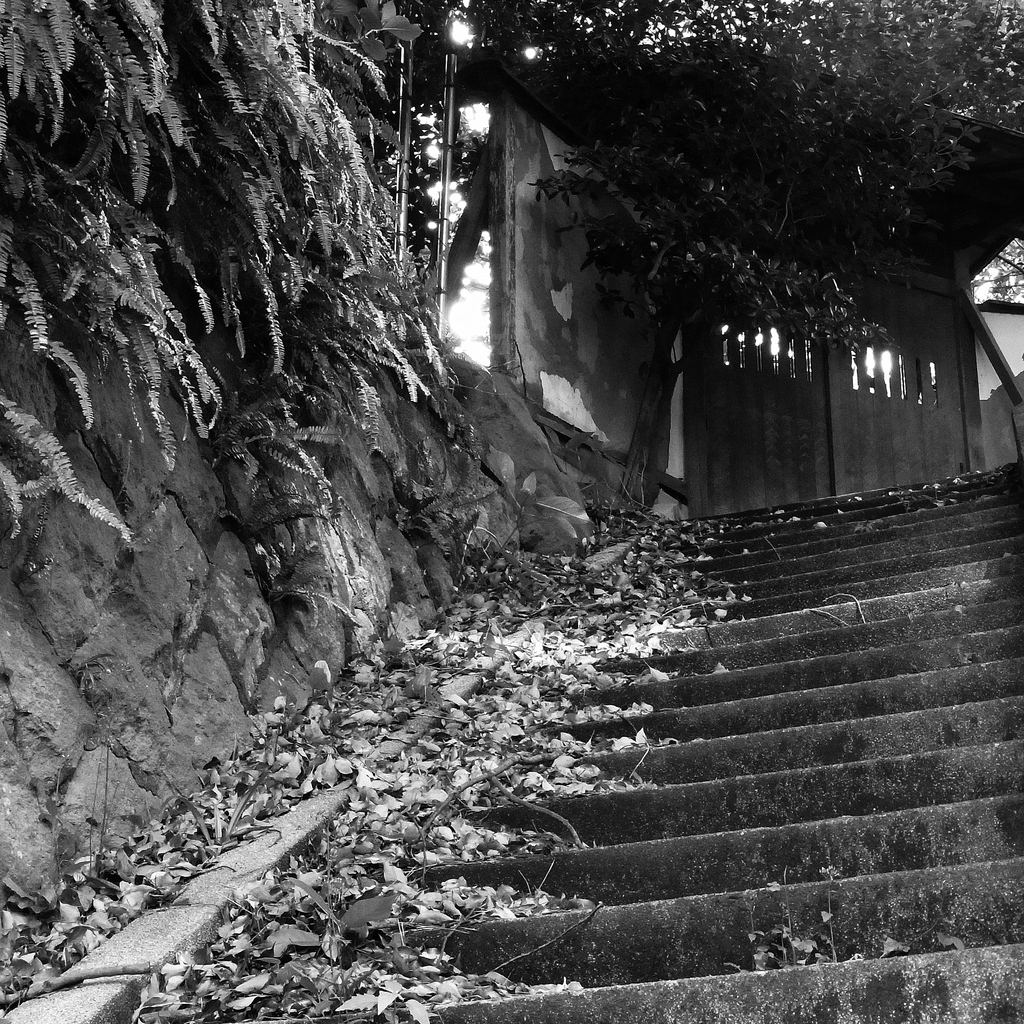 家門への石段