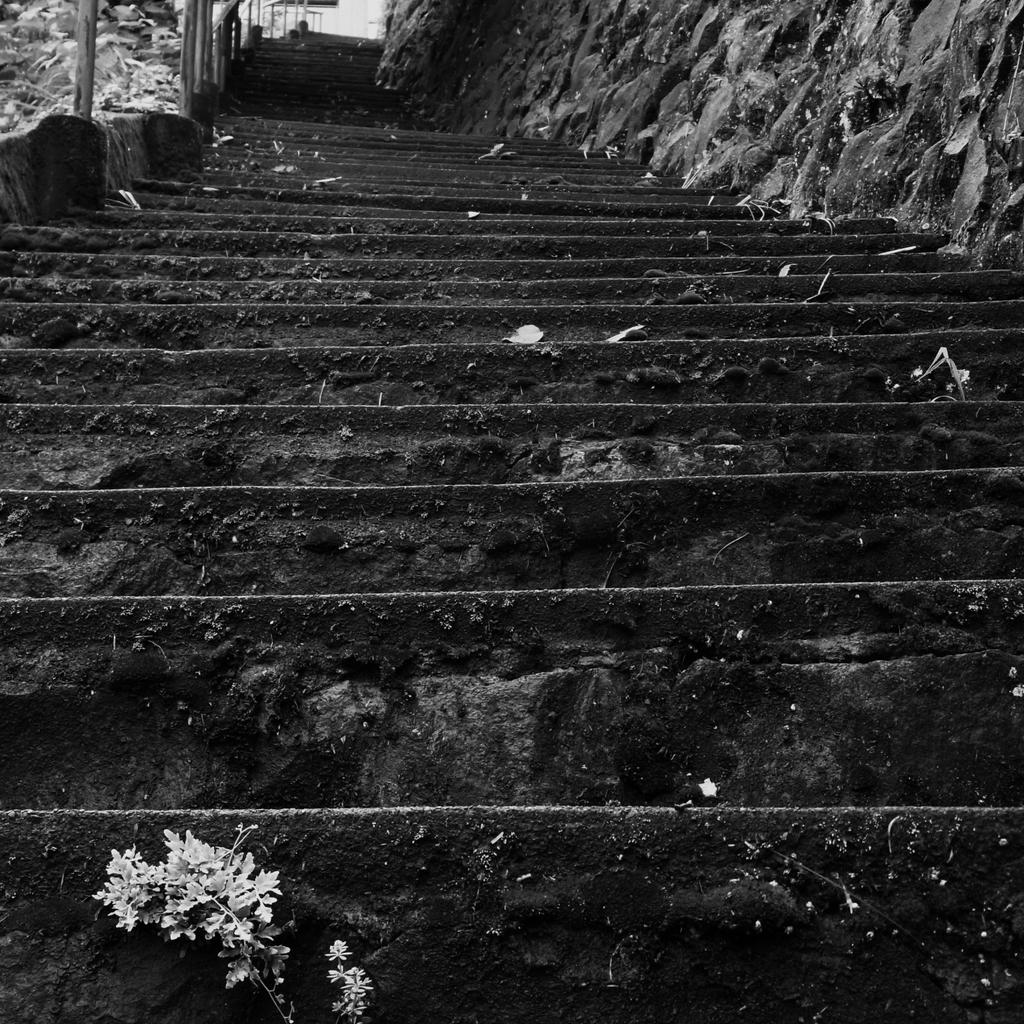 石段の向こう