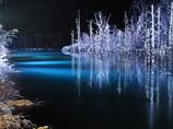 青い池のライトアップ