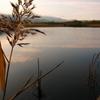 一湖 朝焼け