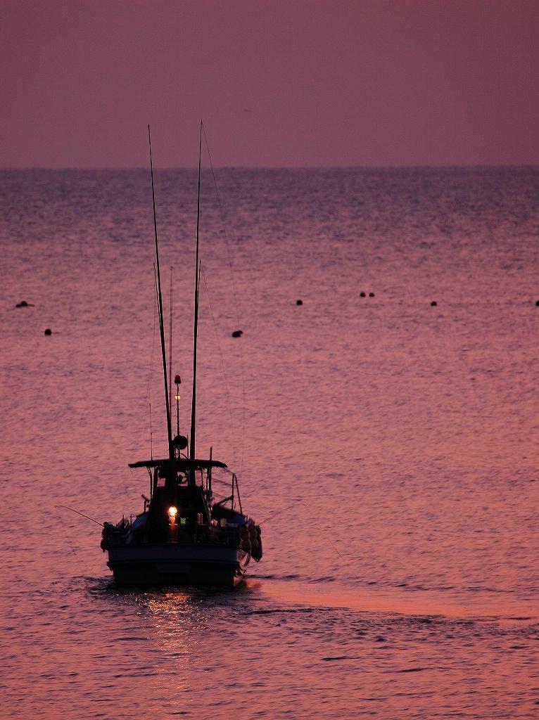 朝まずめの漁