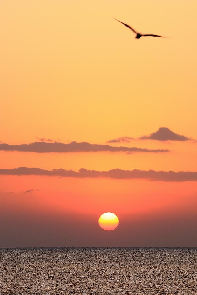紀伊水道の夜明け