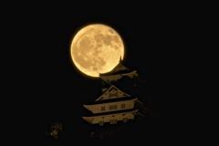 岐阜城~満月