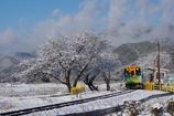 樽見鉄道冬景色