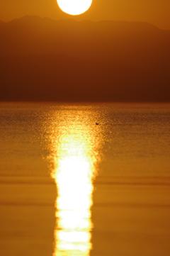 琵琶湖の日の出