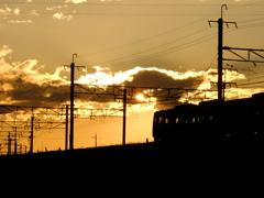 夕陽の中1
