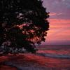 9月1日 琵琶湖の夕焼け3