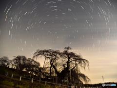 滝桜と夜空③