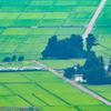 田園風景をゆく
