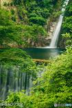 神戸 布引の滝-1