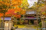 常隆寺の紅葉-6