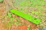 座れぬベンチ(2)