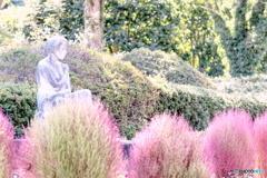 コキアと石の女性