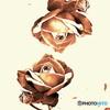 薔薇と薔薇の会話