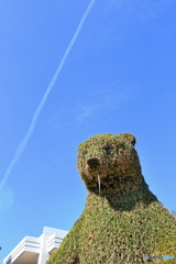 青空と飛行機雲と熊の鼻水