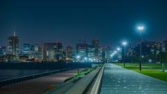 東京新夜景スポット 豊洲ぐるり公園5