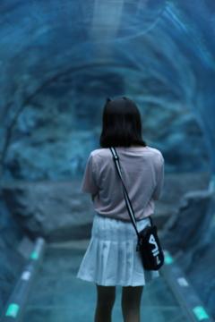 何もいないトンネル