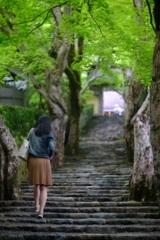 あなたと登る未来への階段