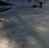 スケート遊び