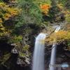 二ノ滝と黄色