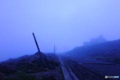 誘われて、霧