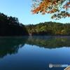初秋の毘沙門沼