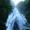 朝靄の大瀑