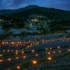 坂折棚田 田の神様灯祭り