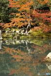 紅葉の季節(2)