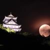 岐阜城満月