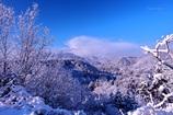 早朝の雪景