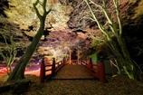 横蔵寺ライトアップⅠ
