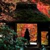 京都●安楽寺の秋