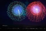 諏訪湖全国新作花火競技大会 優勝(むすんでひらいて)