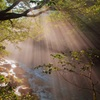 円原川の光芒 光を撮る