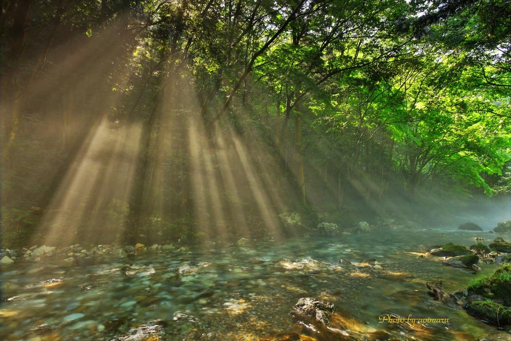 円原川の光芒Ⅲ