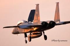 岐阜基地F-15夕日に染まる