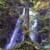とちの木と滝