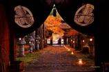 大智寺の灯り