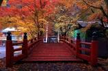 横蔵寺ライトアップⅣ