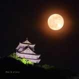 岐阜城満月Ⅱ