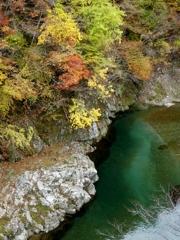 馬瀬渓谷の清流と紅葉です
